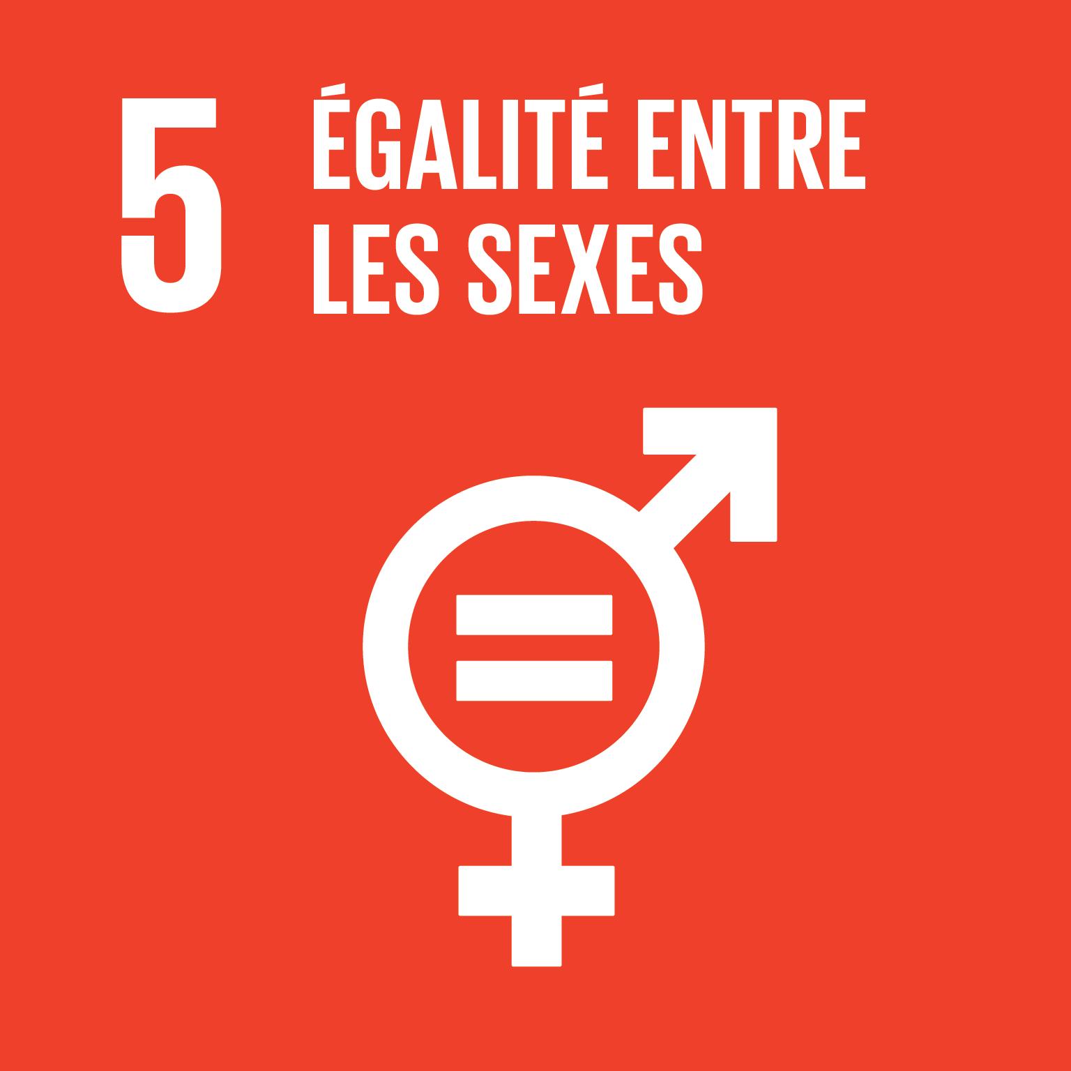ODD Egalité entre les sexes