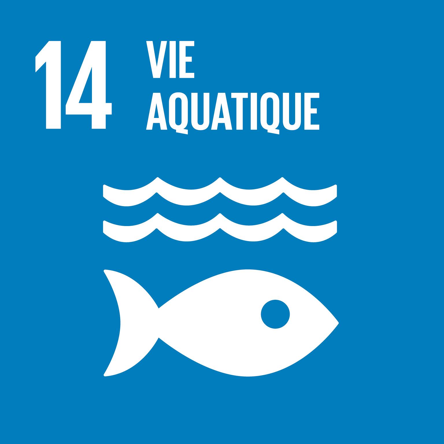 ODD Vie aquatique