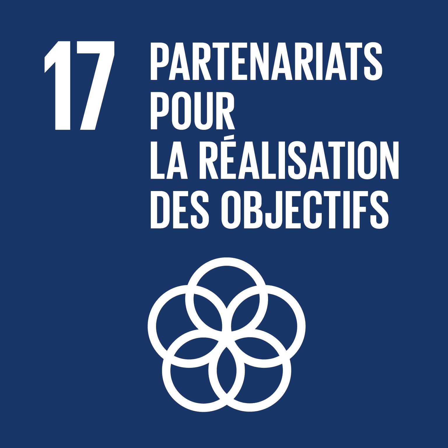 ODD Partenariats pour la réalisation des objectifs