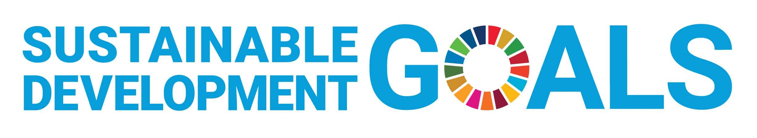 Go Goals! SDG board game