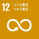 SDG 12